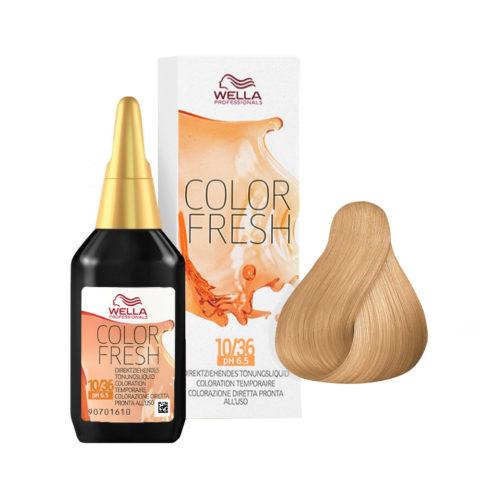 10/36 Blond clair lumineux doré violet Wella Color fresh 75ml