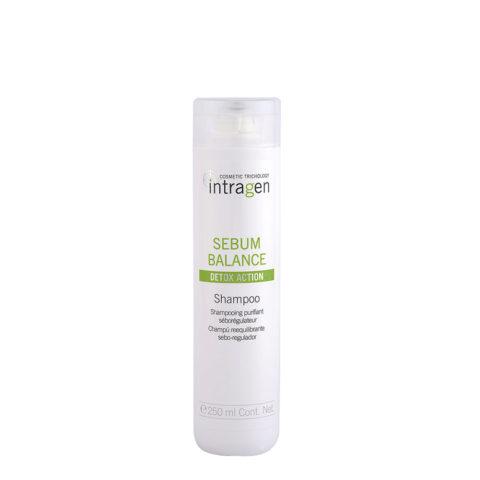 Intragen Sebum Balance Shampoo 250ml - shampooing séborégulateur