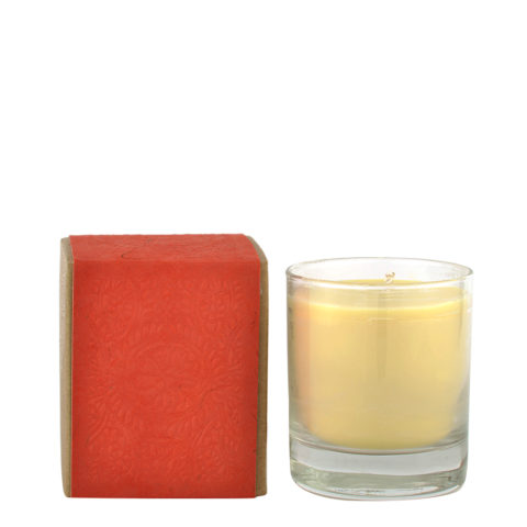 Aveda Comfort & Light Candle - bougie de soja