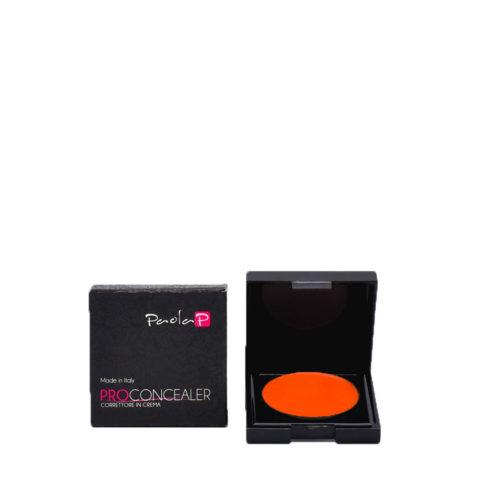 Paola P 09 Pro Concealer Crème Anti - Cernes 3gr