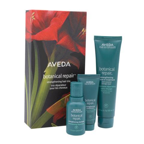 Aveda Botanical Repair Set De Noël Pour Cheveux Abîmés
