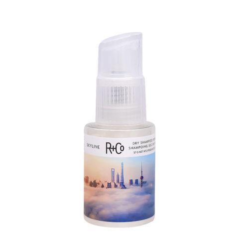 R   Co Skyline Dry Shampoo Powder Poudre Volumisante 57gr