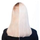 Redken Color Extend Blondage Kit Anti-Jaune Shampoo 300ml Conditioner 300ml